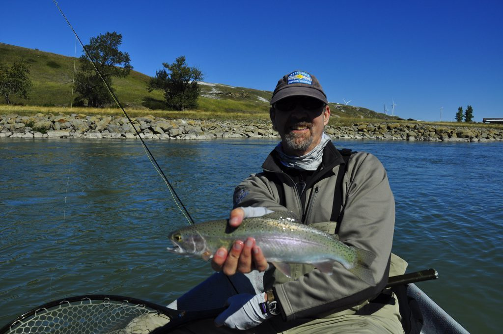 P.M.D. caught rainbow -Oldman Tailwater