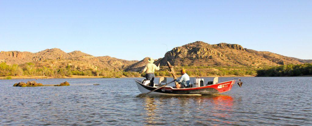 Arizona bass fly fishing wing shooting adventures for Fly fishing arizona