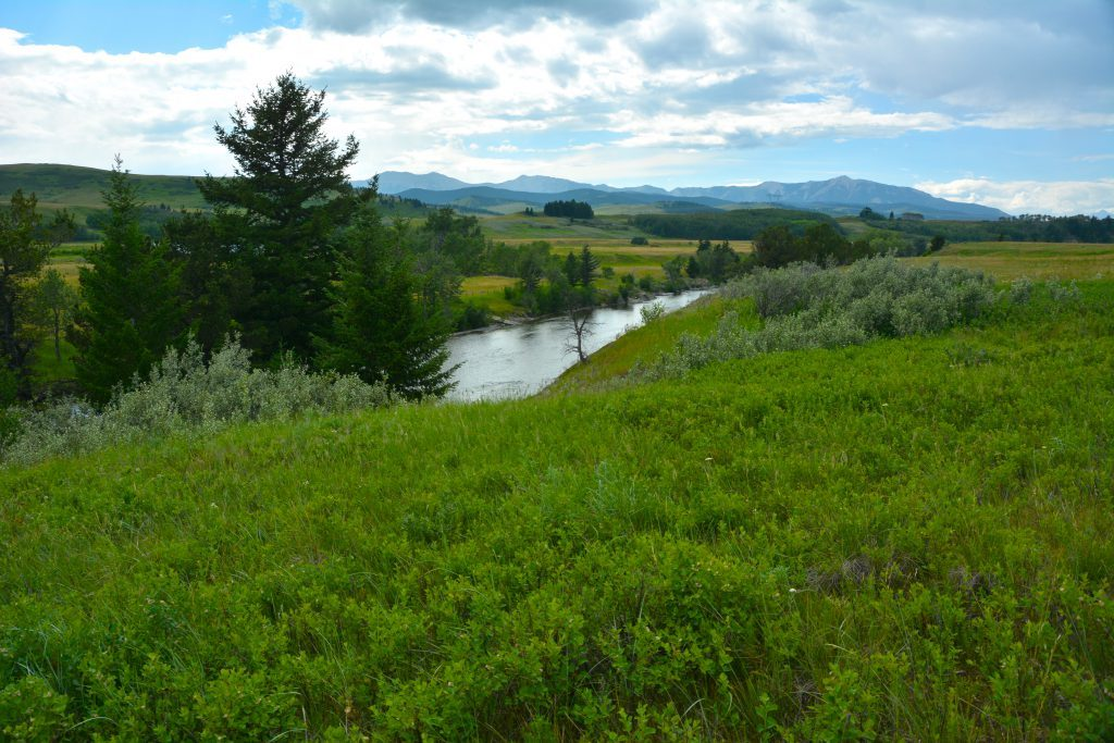 Upper Oldman River offers great scenery and fishing