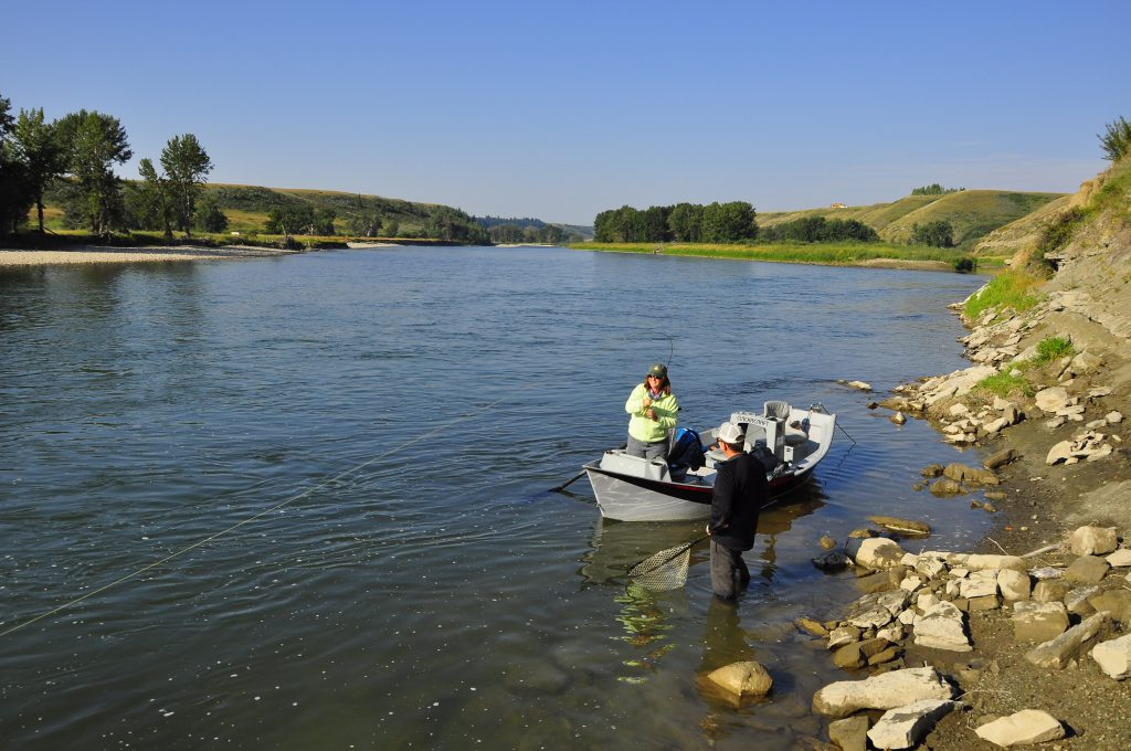 Bow River Fly Fishing Guides Dave Brown Outfitters