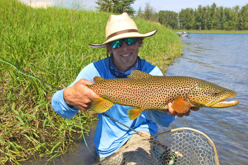 Bow river fly fishing guides dave brown outfitters for River fly fishing